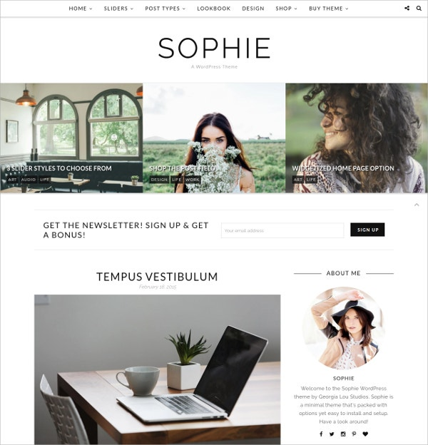 WordPress Theme Responsive Design $35