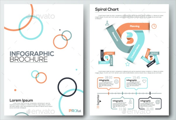 pro flat infographic brochure