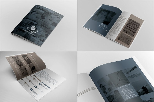 corporate agency infographic brochure