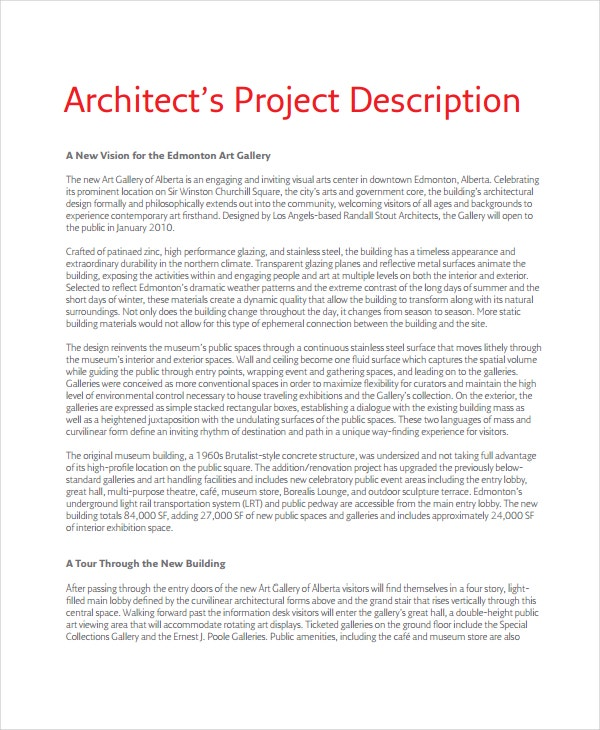 project description template 6 free word pdf document