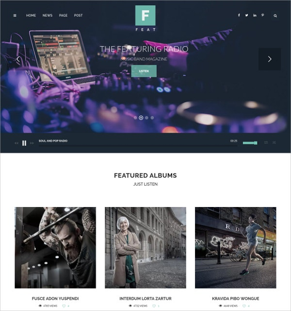WordPress Themes For Musicians $45