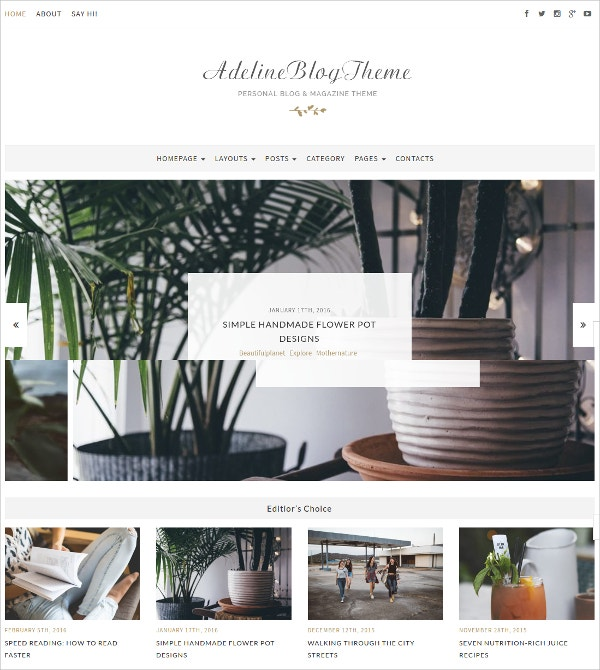 Personal Blog & Magazine WordPress Theme $44