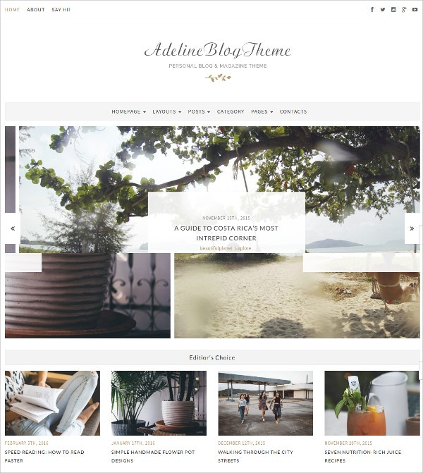 Personal Blog & Magazine WP Theme $44