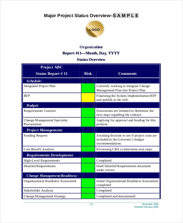Project Executive Report Template