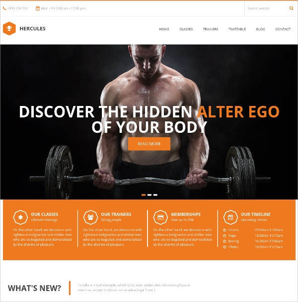 Gym Fitness & Sports WordPress Theme $49