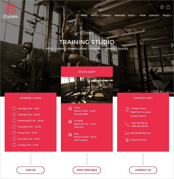 Gym Fitness & Beauty WordPress Theme $59