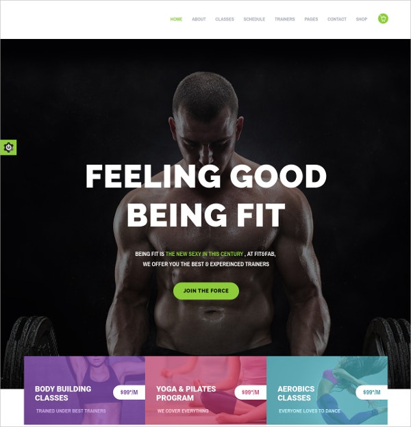 Aerobic, Gym And Fitness WordPress Theme $59