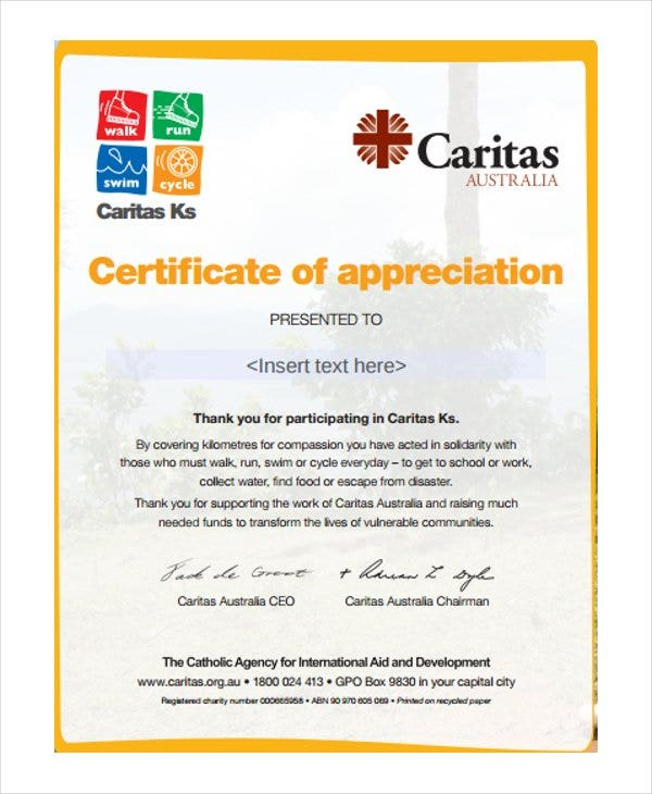 Certificate Of Appreciation Format  Certificates Of Appreciation Wording Samples