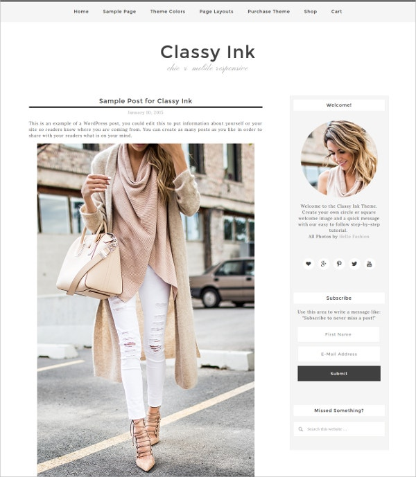 Responsive eCommerce Blog WordPress Theme $30