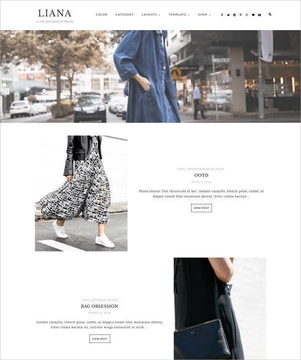 Stylish Minimalist WordPress Theme $49