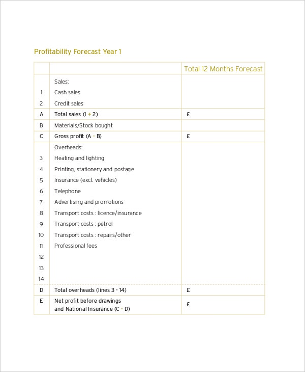 12 Month Balance Sheet Financial Projection
