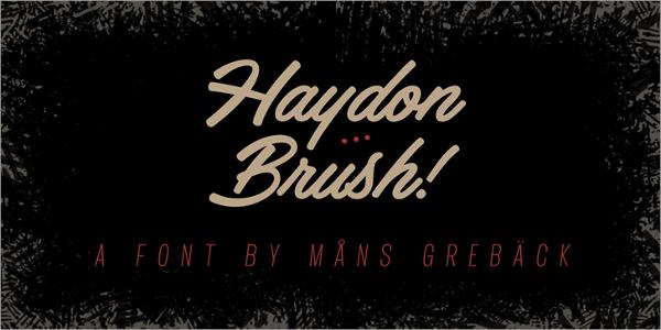 haydon brush logo font