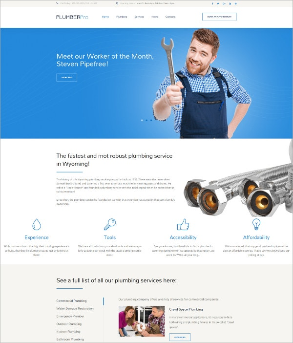 Plumbing Service WordPress Theme $75