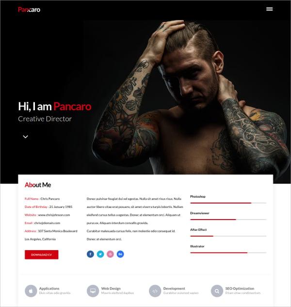 Professional Portfolio WordPress Theme $13