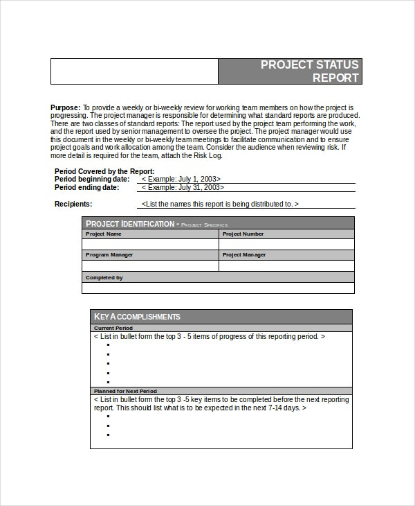 6+ Project Status Templates _ Free Word, Pdf Documents Download