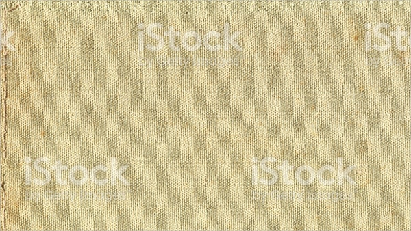 Isolated Grunge Canvas Texture