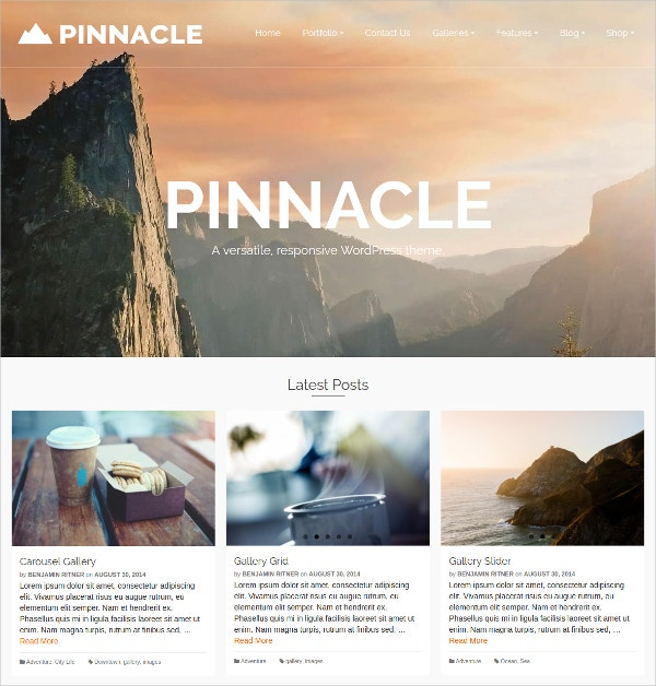 multiple style free wp website theme