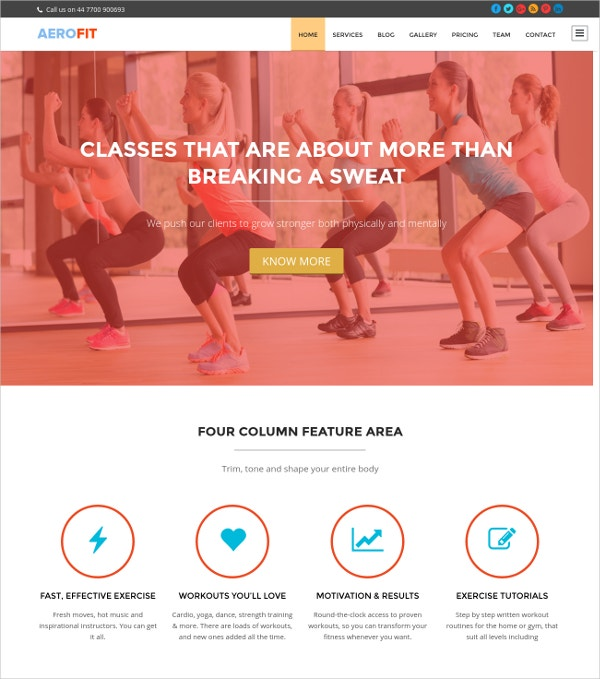 free fitness wordpress website theme