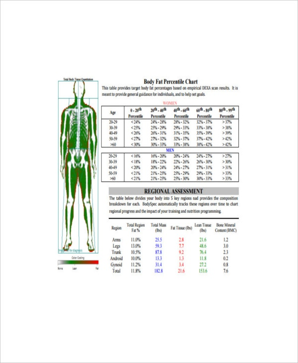 ideal body fat percentile chart