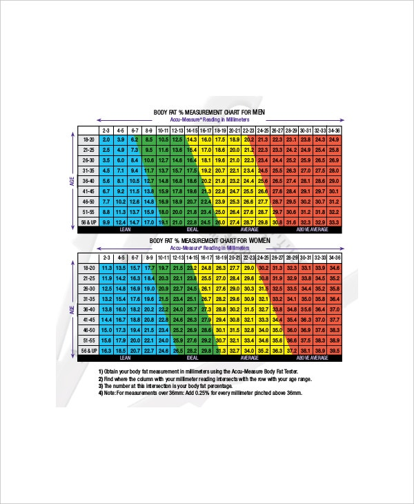Body Fat Percentage Chart Templates  Free Sample Example