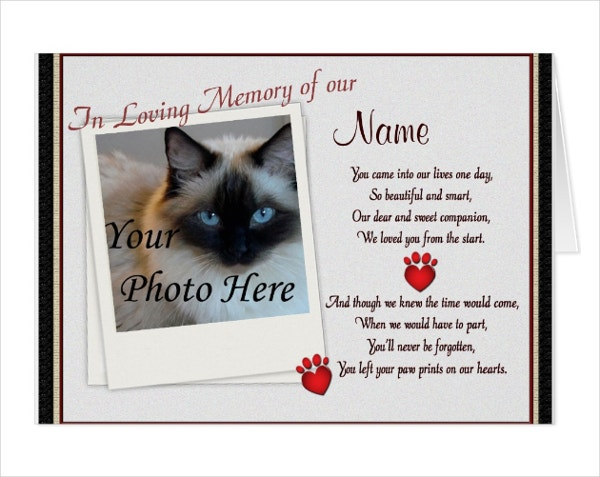 pet paw prints memorial card