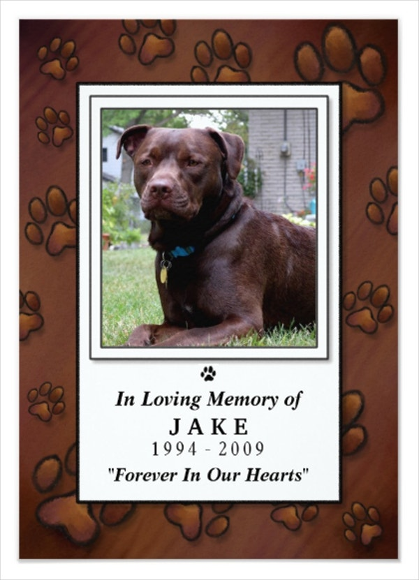 14+ Pet Memorial Cards - Free PSD, AI, EPS Format Download | Free ...