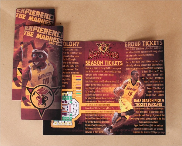 Mad Ants Basketball Ticket Brochure