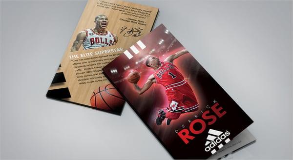 Derrick Rose Basket Ball Brochure