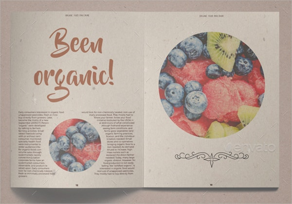 Retro Organic Food Brochure