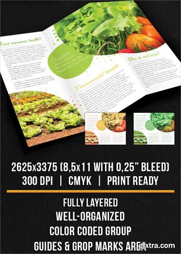 Leafy Organic Food Tri-Fold Brochure