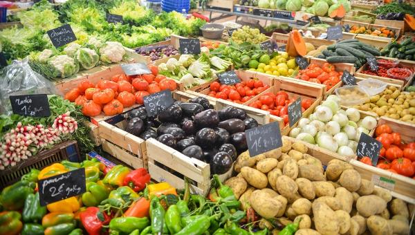 organicfoodbrochure2