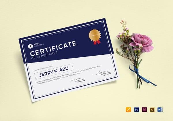 experience certificate illustrator template