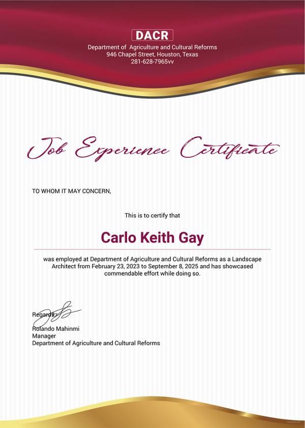 job-experience-certificate-template