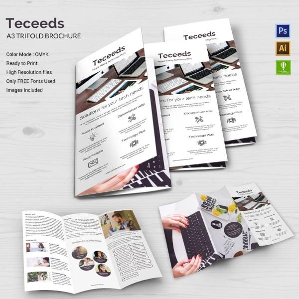 teceeds a3 tri fold brochure