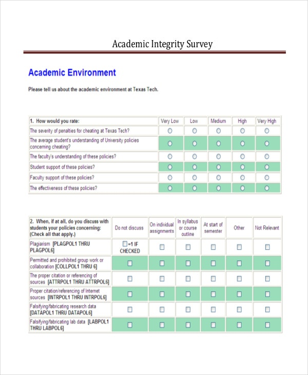 Academic Survey Report Template