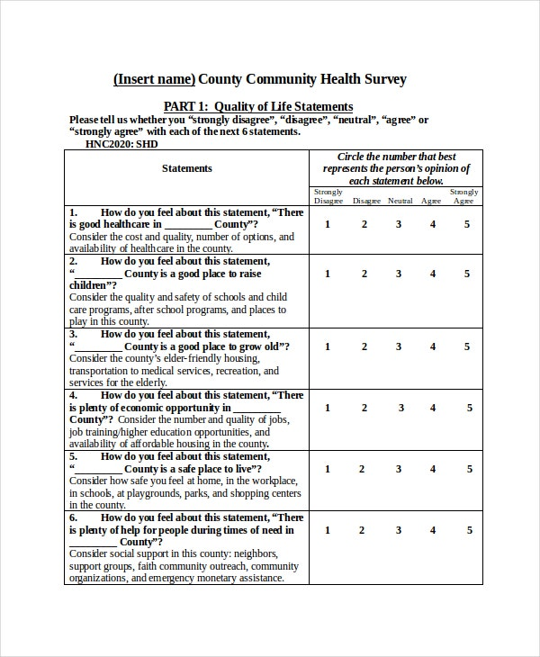 Health-care Survey Report Template