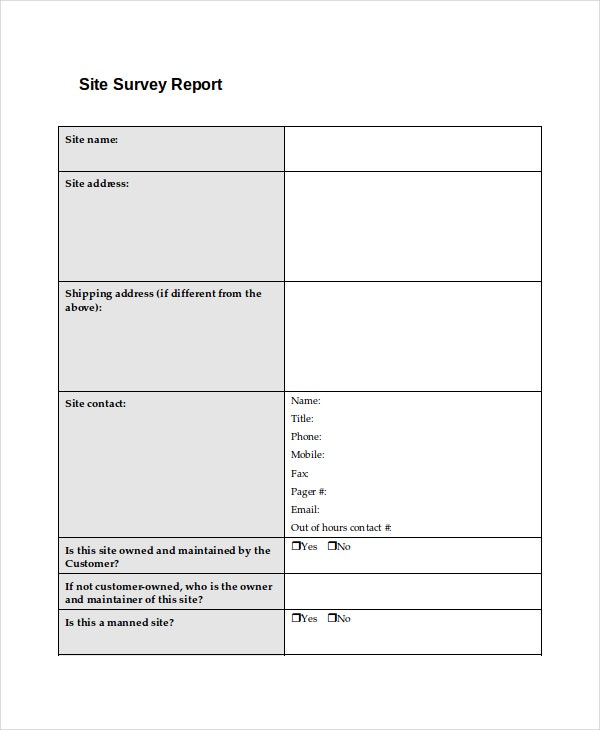 surveyors report template