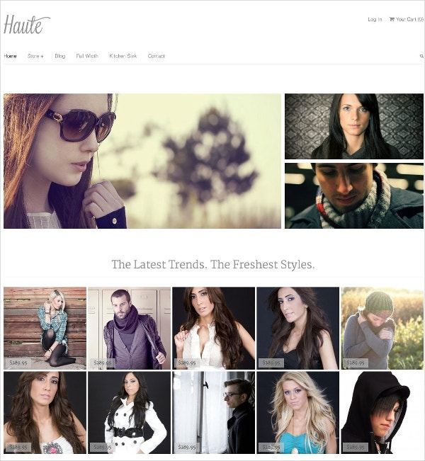 Affiliate eCommerce WordPress Theme $59