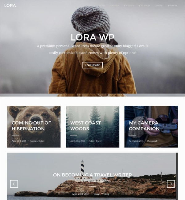WordPress Blog & 3 Column Portfolio Theme $44