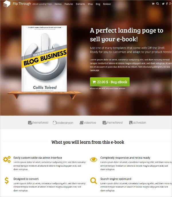 eBook Marketing WordPress Theme