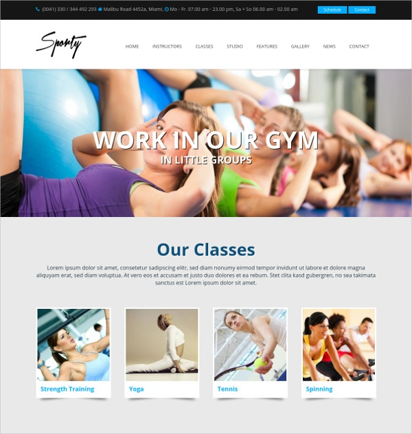 WordPress Gym Personal Trainer Theme $69