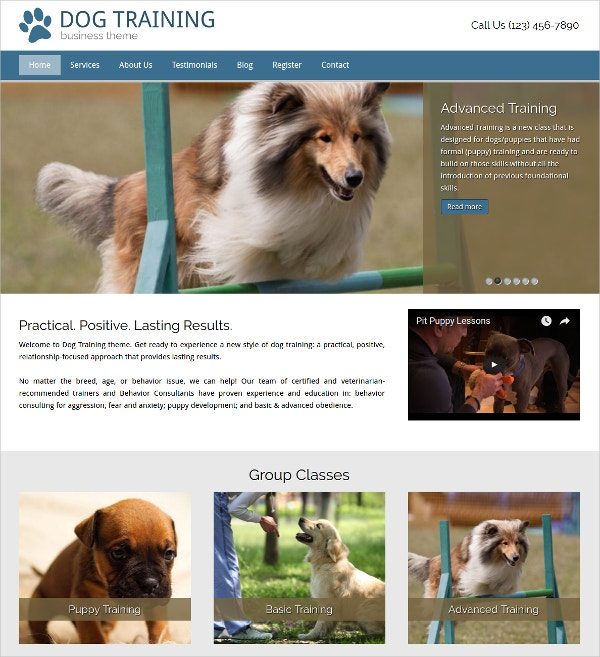 Dog Trainer WordPress Theme $75