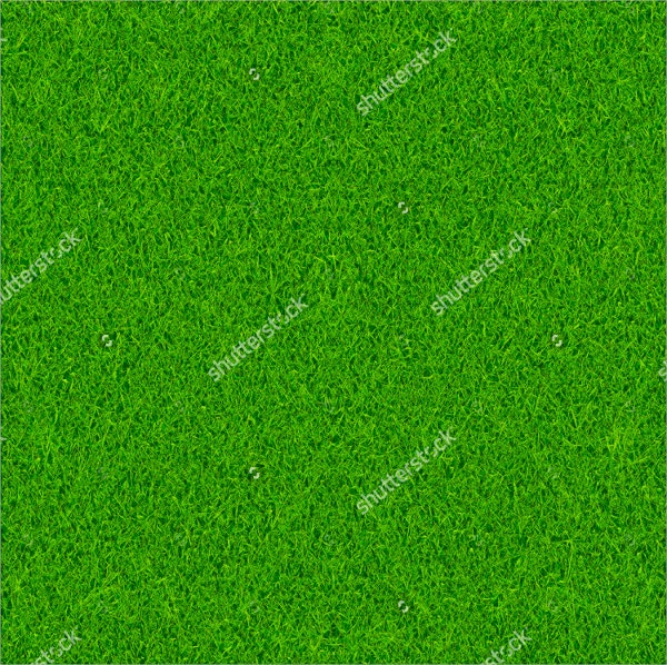 Tileable Grass Texture Design