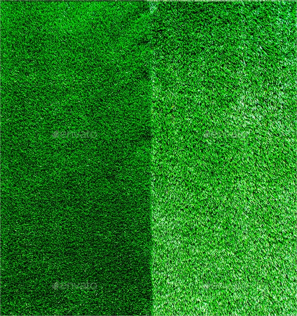 high quality grass texture
