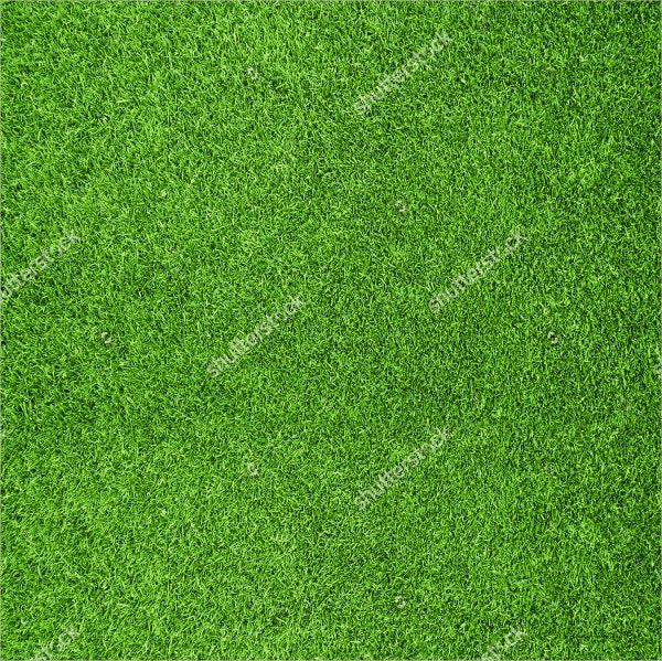 33+ Grass Textures - Free PSD, AI, Vector, EPS Format ...