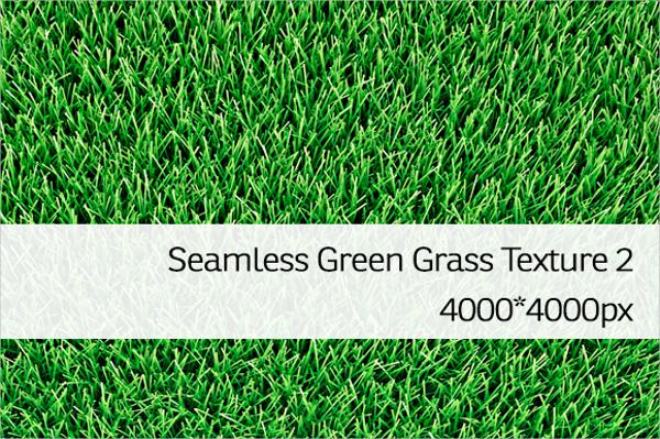 Seamless Grass Vector Texture Template