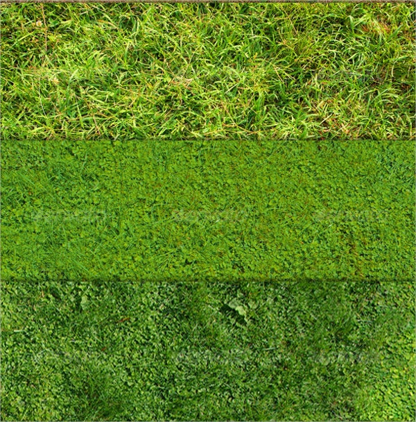 Grass & Ground Texture Designs