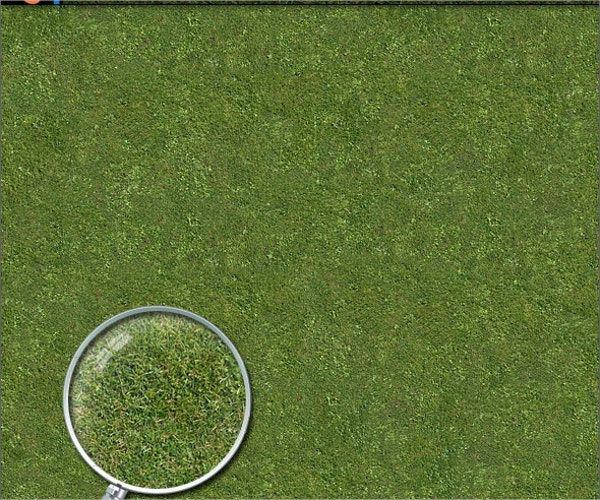 Grass Lawn Hi-Res Texture for Photoshop