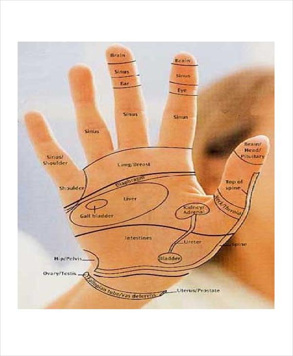 hand reflexology chart template