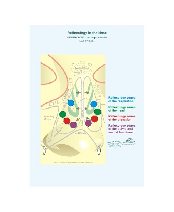 nose reflexology chart template